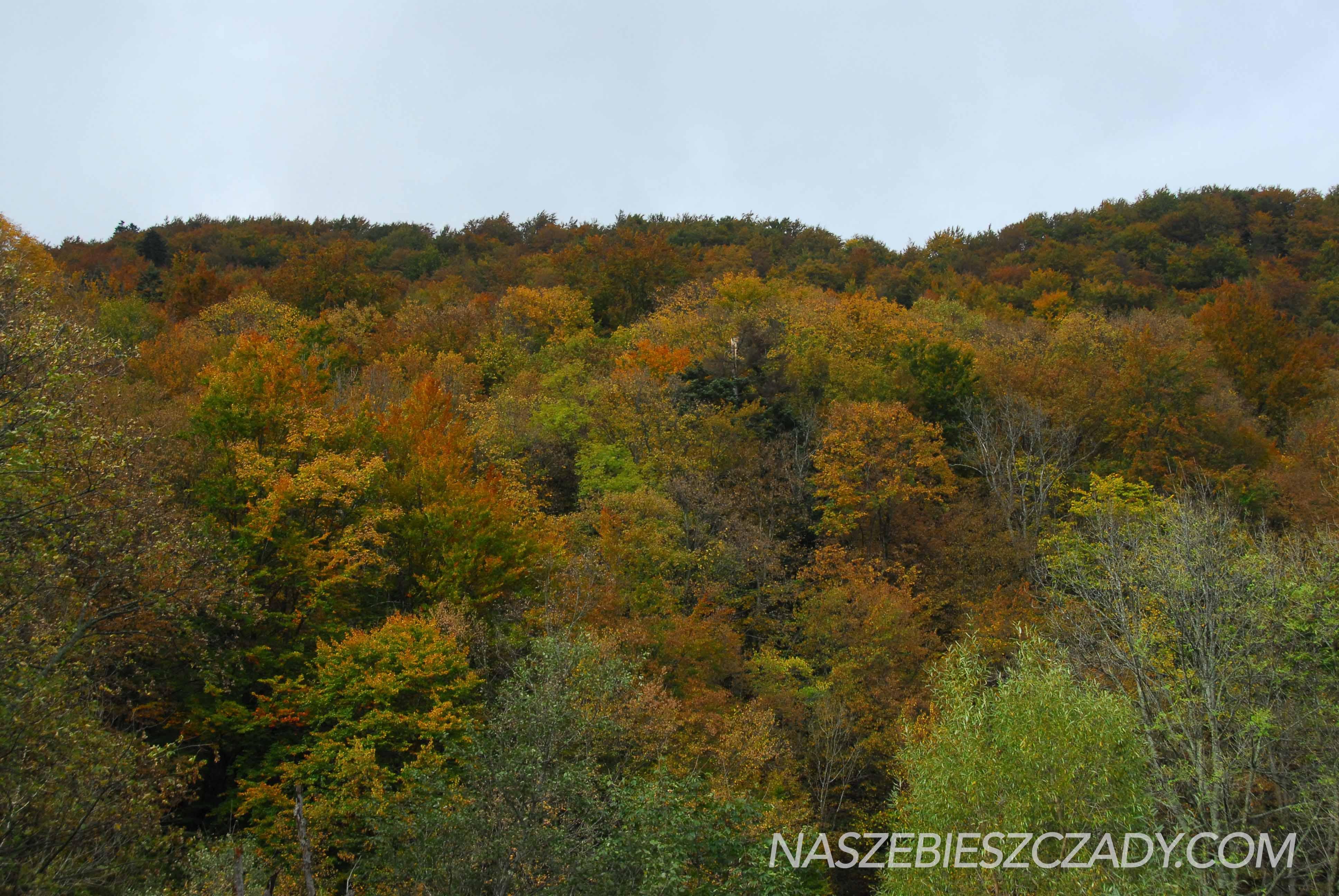 Kiedy jechac w Bieszczady jesienia