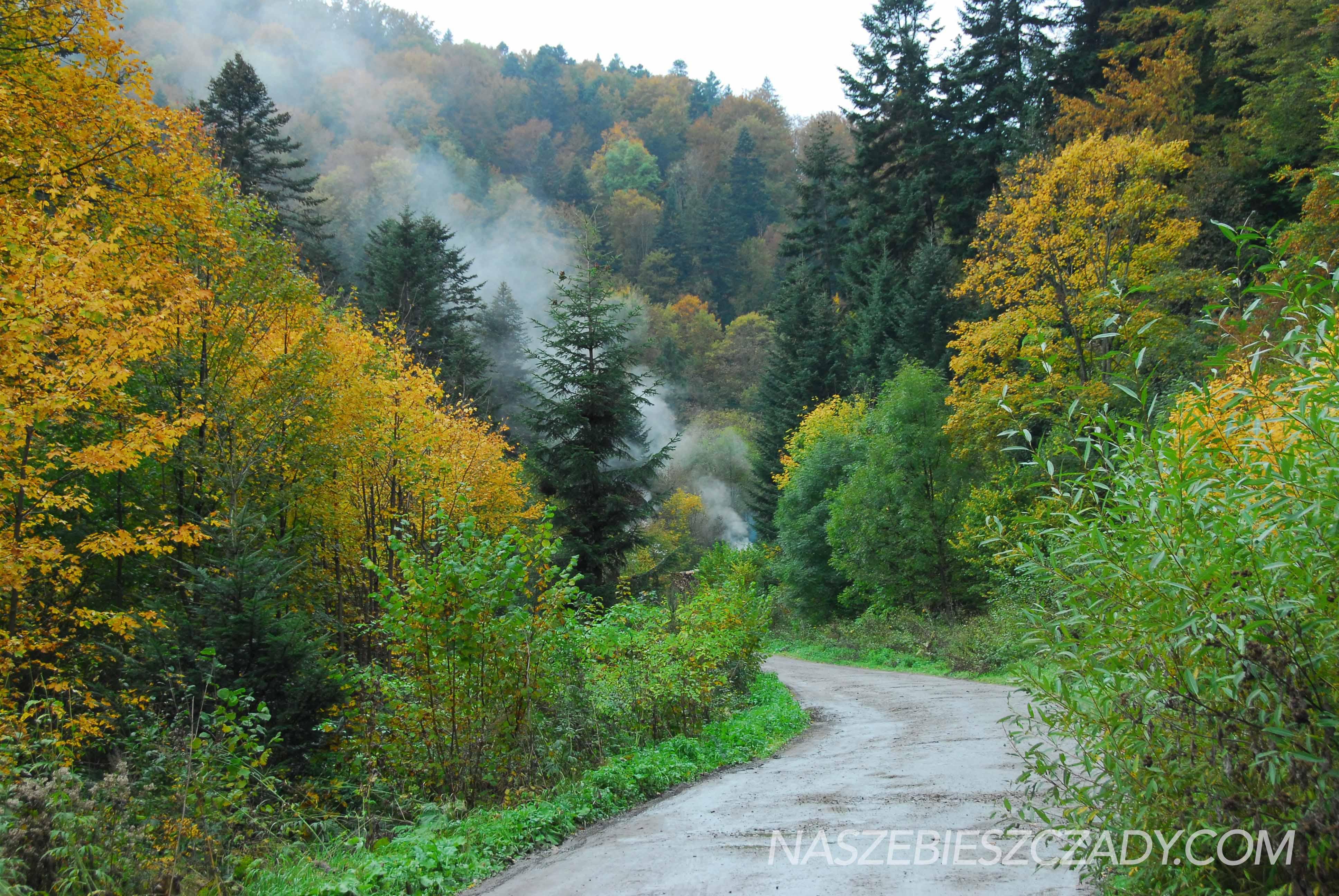 Zlota jesien w Bieszczadach