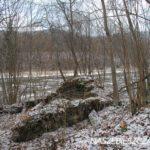Zimowe szlaki w Bieszczadach